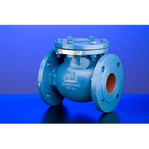 Hattersley - Fig M650 - Check Valves - Ductile Iron - Swing Pattern - PN25