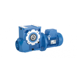 Rossi - Worm gear reducers and gearmotors, A Series