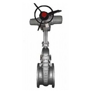 Electric Actuated Gate Valves